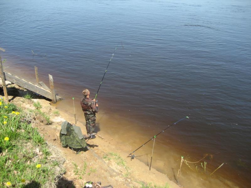 рыбалка карася в истре